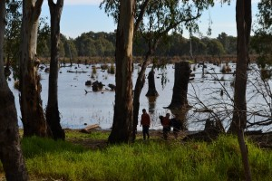 School students enjoying Reedy Swamp