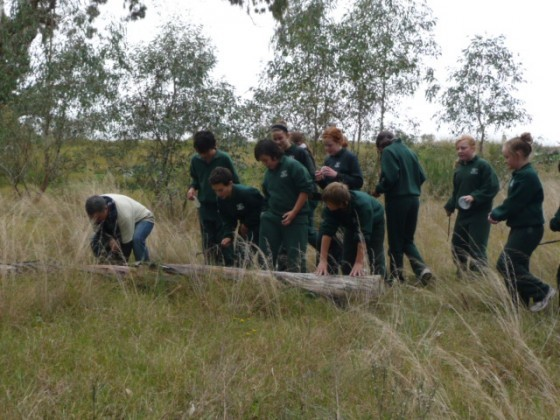 John Caldow, Bug Blitz and students searching for bugs